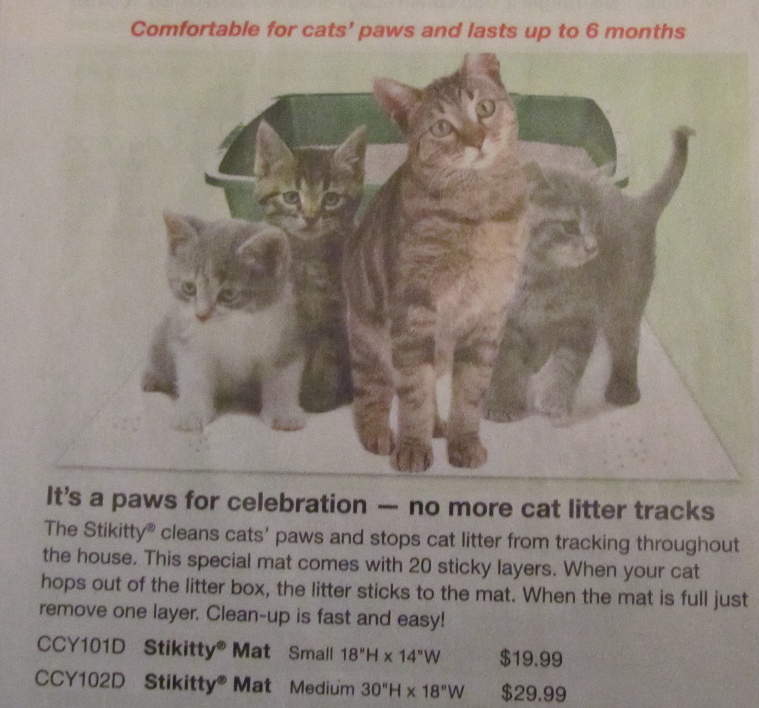 Skymall Cats Holy Shitters
