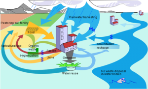 613px-Ecological_sanitation_cycle-en